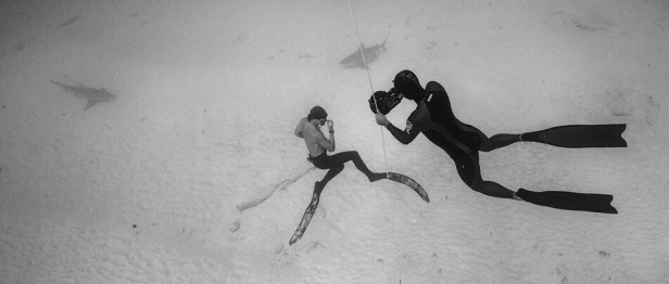 world champion freediver alexey molchanov capturing freedive tulum instructor while diving with bullsharks in playa del carmen mexico